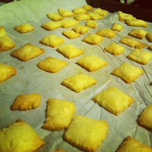 (Homemade White Cheesy Squares, Kristy McCarron DConHeels)
