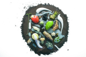 elBulli Seed Plate. Designed by Ferran Adrià/elBulli. (Photo: Francesc Guillamet)