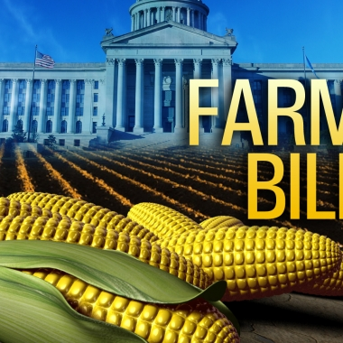 The Farm Bill was passed by the House on Wednesday and goes to the Senate next week. (Graphic: JBG)