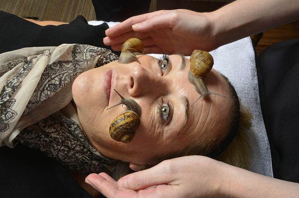 Snail facials may not be for everyone (Photo: John Robertson)