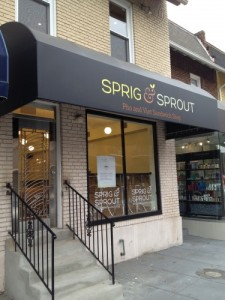 Sprig and Sprout (Photo: popville.com)