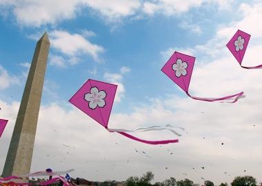 Cherry blossom kites at the 2012 Cherry Blossom Kite Festival. (Photo: Daniel Sone)