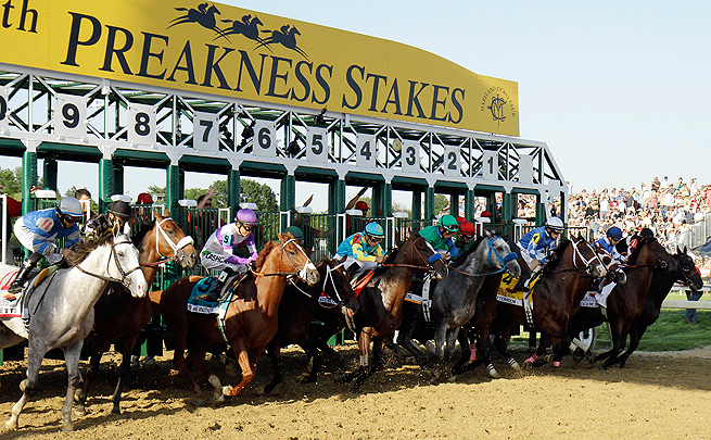 Horses come out of the gate at last year's Preakness Stakes. (Photo: Garry Jones/AP)