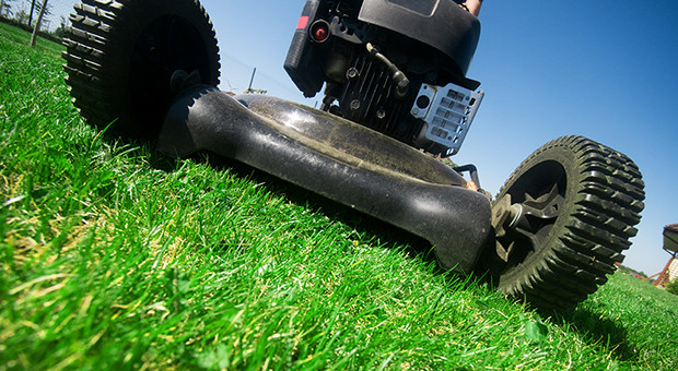 According to the American Academy of Pediatrics Orthopedic Society, children allowed to mow the lawn should be at least 12 years old if operating a push mower or at least 16 if using a ride-on mower. (Photo: Penn State)