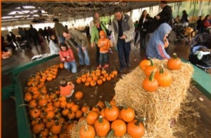 Kids can decorate pumpkins Saturday at Glen Echo Park's Fall Frolic. (Photo: Glen Echo Park)
