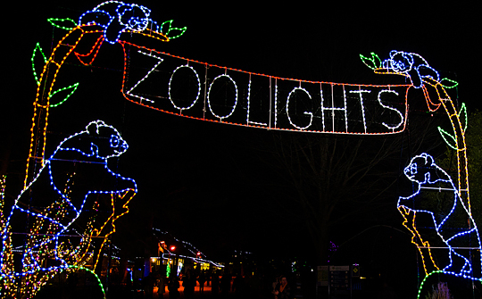 ZooLights is open nightly from 5-9 p.m. except Christmas Day. (Photo: National Zoo)