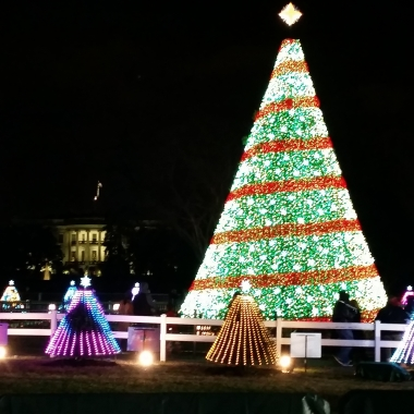 The National Christmas Tree on the Ellipse is lit nightly through Jan . 1 until 10 p.m. (Photo: Mark Heckathorn/DC on Heels)