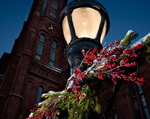 Holiday events will be happening at all Smithsonian museums this weekend. (Photo: Smithsonian Institution)