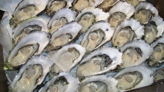 "City Tap House will have a ""shuckfest"" on Memorial Day. (Photo: iStockphoto)"