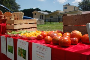 Tour Montgomery County farms this weekend. (Photo: Montgomery County Department of Economic Development)