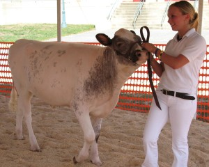 The Prince George's County fair includes animals. (Photo: Prince George's County Fair)