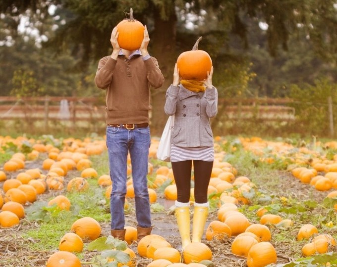Head to the pumpkin patch for a good time. (Photo: loveandgifts.com)