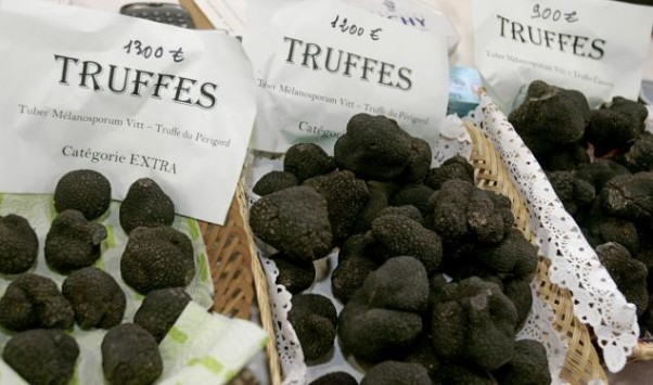 Central is offering dishes topped with shaved black truffles this coming week. (Photo: Reuters)