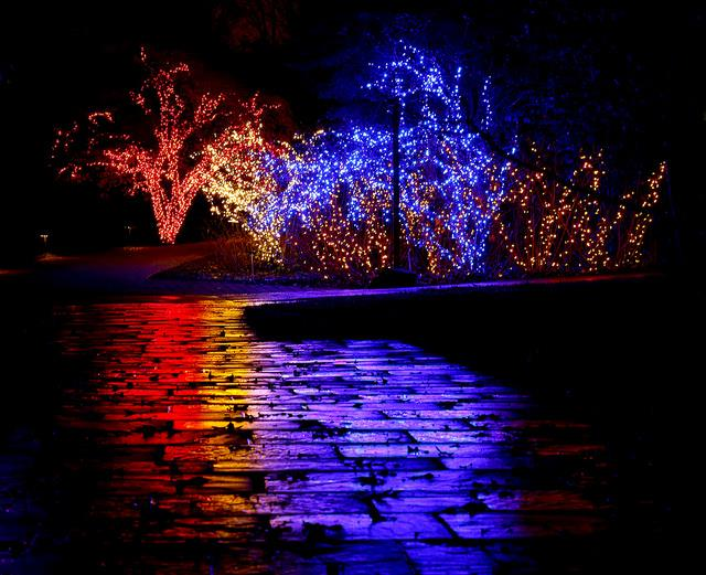 Over a million lights decorate brookside gardens in wheaton photo montgomery parks