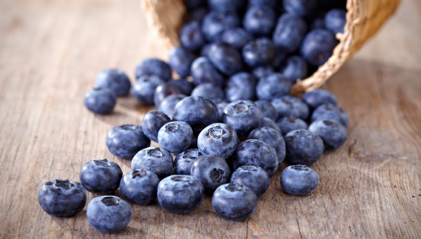 A study showed people who had mild cognitive impairment and ate freeze-dried blueberry powder --the equivalent of a cup of berries -- increased cognitive performance and brain function. (Photo: U.S. Highbush Blueberry Council)