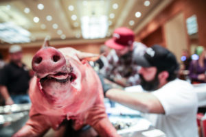 Cochon 555 comes to the Lowes Madison Hotel Sunday with five area chefs using five heritage pigs to make six dishes each. (Photo: Cochon 555)