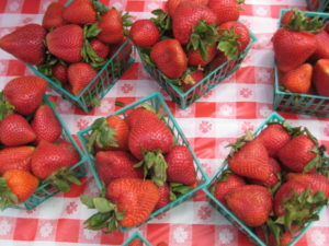 Emmanuel Episcopal Church hosts its annual Delaplane Strawberry Festival at Skymeadow State Park this weekend. (Photo: Emmanuel Episcopal Church)