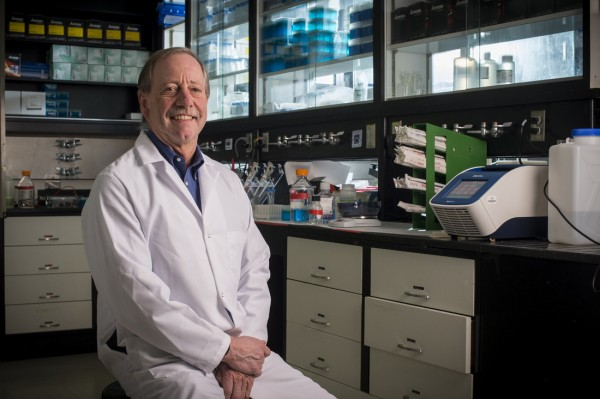 Steven Austed, distinguished professor and chair of the Department of Biology at the University of Alabama at Birmingham and former Georgetown University lecturer. (Photo: UAB)