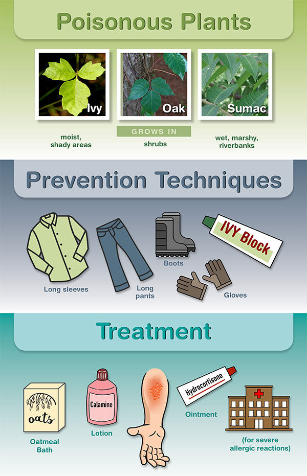 Know how to identify, prevent and treat contact with poisonous plants. (Graphic: UAB)