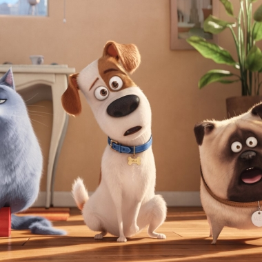 The Secret Life of Pets debuted in first place over the weekend with $104.35 million. (Photo: Universal Pictures)