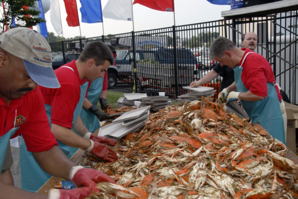 The Rotary Club of Annapolis plans to serve 350 bushels of No. 1 male crabs at its crab feast Friday. (Photo: Four Claws Reviews)