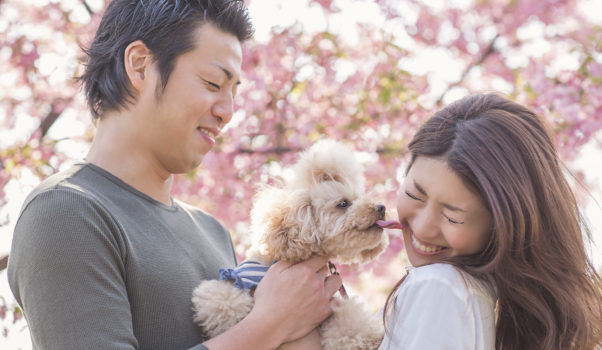 Sharing responsibility can make your relationship stronger. (Photo: www.theswexperts.com)