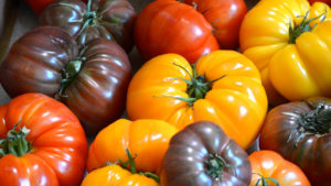 The North Bethesda Market holds a Tomato Festival with all things tomato on Saturday. (Photo: Getty)