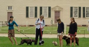 Take your dog to Mount Vernon for a 1.25-mile tour and learn about George Washington's dogs. (Photo: George Washington's Mount Vernon)