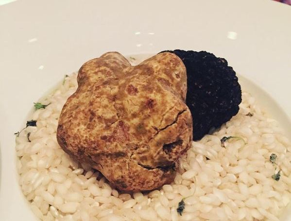 Bibiana Osteria-Enoteca is serving several dishes made with white and black truffles this month. (PHoto; Bibiana Osteria-Enoteca/Instagram)
