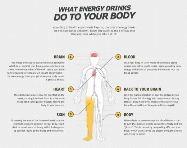 "This infographic highlights the effects energy drinks have on our body (Image: <a href=""https://sports.bwin.com/en/news/rugby-world-cup-guide/"" target=""_blank"">bwin</a>)"