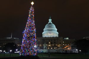 This year's U.S. Capitol Christmas Tree is an 80-foot Engelmann spruce from Idaho decorated with more than 6,000 handmade ornaments. (Photo: Capitol Christmas Tree)