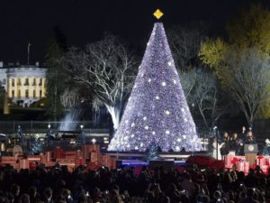 "After leading the cheering crowd in a 5-second countdown, the president officially lit up the tree and wished everyone a ""Merry Christmas"" as Michelle and Sasha waved to the audience. The president and first lady smiled and held hands as they left the stage with their daughter. (Photo: Michael Reynolds/EPA)"