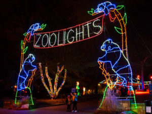 ZooLights returns to the National Zoo with more tnan 500,000 LED lights. (Photo: Smithsonian National Zoo)