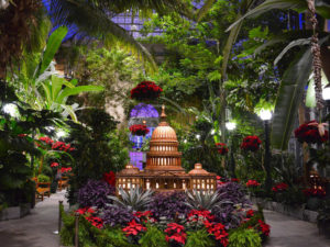Seasons Greenings features area landmarks made entirely of plant materials. (Photo: U.S. Botanic Garden)