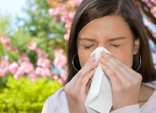 """Tree pollen and mold are the primary allergens during the springtime """"sneezing season."""" (Photo: Walgreens)"""