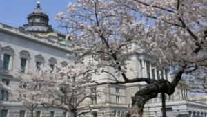 The Library of Congress holds its annual Japanes Culture Day on Saturday. (Photo: washington.org)
