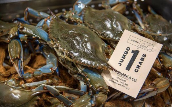There are 455 million blue crabs in the Chesapeake Bay this year, according to state estimates. (Photo: Ivy City Smokehouse)