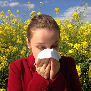 Doctors say February's warm spell and March's cold snap could mean tree and grass allergies overlap in May. (Photo: cenczi/Pixabay)