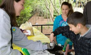 The National Zoo will have hands-on Earth Day activities on Saturday. (Photo: National Zoo)
