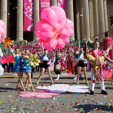 The National Cherry Blossom Festival Parade is Saturday along Pennsylvania Avenue NW starting at 10 a.m. (Photo: National Cherry Blossom Festival)