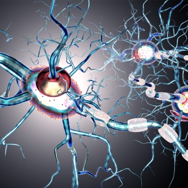 Neuropathy is when small blood vessels supplying the nerves get damaged by diabetes and begin to die. (Photo: Thinkstock)