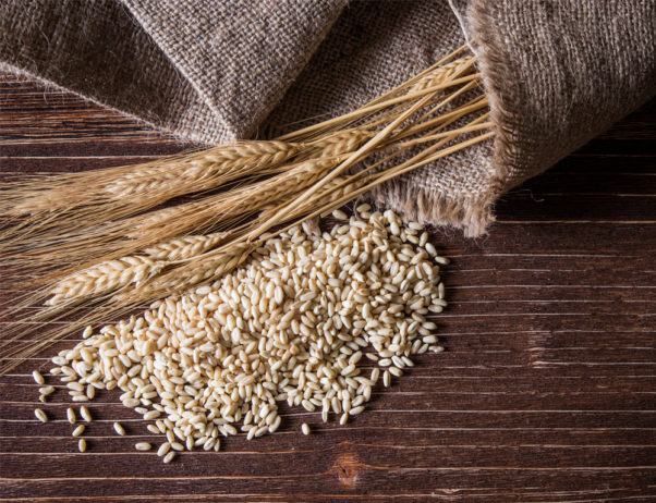 Gluten is a protein which is stored, along with starch, in many grains including rye, wheat and barley.  (Photo: Thinkstock)