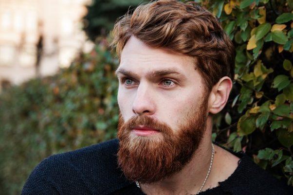 man with full giner hair & beard (Photo: nastya_gepp/Pixabay)