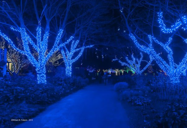 Walk through a half mile of lights at Meadowlark's Winter Walk of Lights. (Photo: William B. Folsom)
