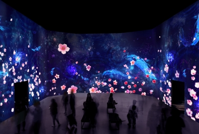 Sakura Yume/Cherry Blossom Dream at Artechouse takes visitors through a moonlit floating digital environment where larger-than-life koi fish and colorful cherry blossom petals react to their presence. (Photo: Artechhouse)