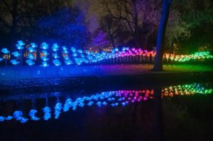 <em>On the Wings of Freedom</em> is one of the light sculptures on dispaly at Baltimore's Light City starting Saturday. (Photo: Aether & Hemera)