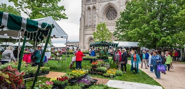 The Washington National Cathedral holds its annual Flower Mart from 10 a.m.-6 p.m. Friday and Saturday. (Photo: M. Joabar)