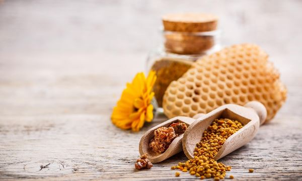 bee pollen with honeycomb and a flower (Photo: Shutterstock)