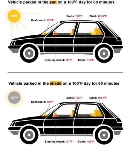 Temperatures inside a car warm up quickly, even when parked in the shade. (Graphic: Safwat Saleem/ASU)