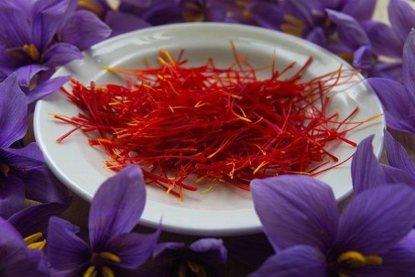 saffron on a plate surrounde by crocuses (Photo: Xtendo/Pixabay)